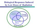 biological responses induced by low doses of radiation33