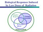 biological responses induced by low doses of radiation42