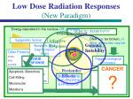 low dose radiation responses new paradigm