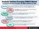 analysts validate emerging wimax market