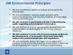 gm environmental principles