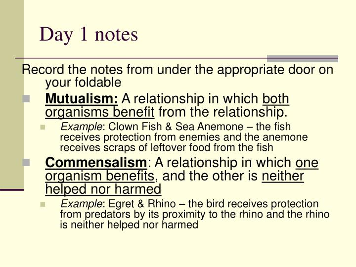 Day 1 notes
