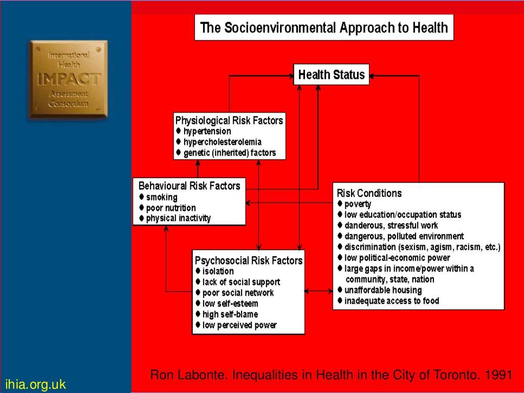 Ron Labonte. Inequalities in Health in the City of Toronto. 1991