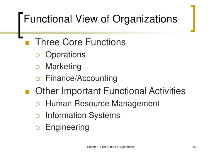 Functional View of Organizations