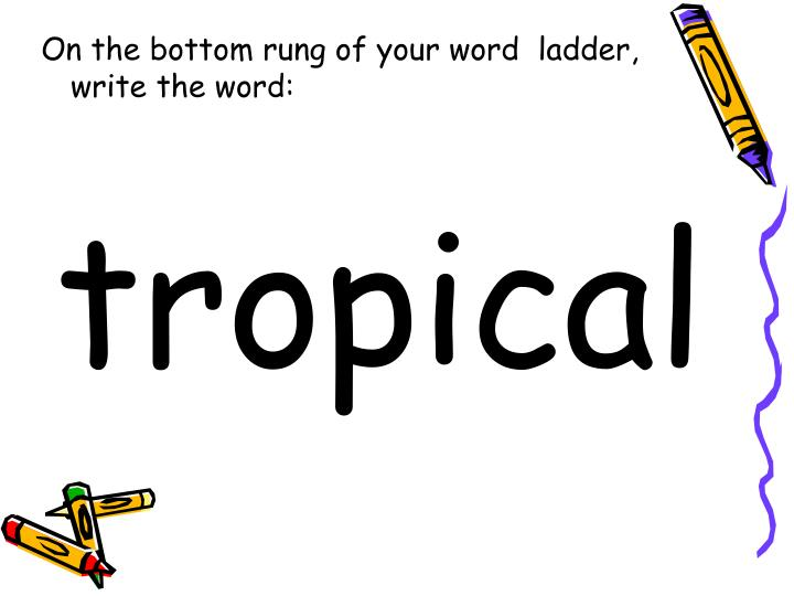 On the bottom rung of your word  ladder, write the word: