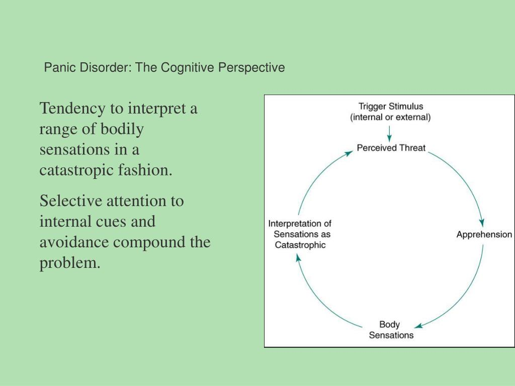 Panic Disorder: The Cognitive Perspective
