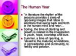 the human year