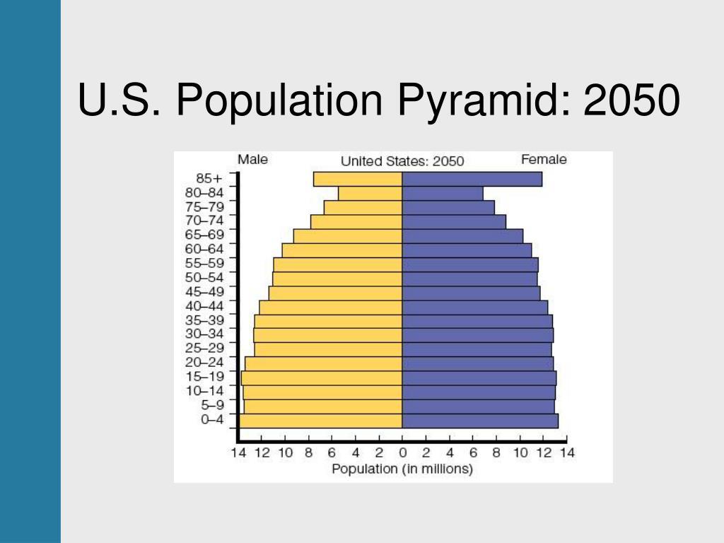 U.S. Population Pyramid: 2050