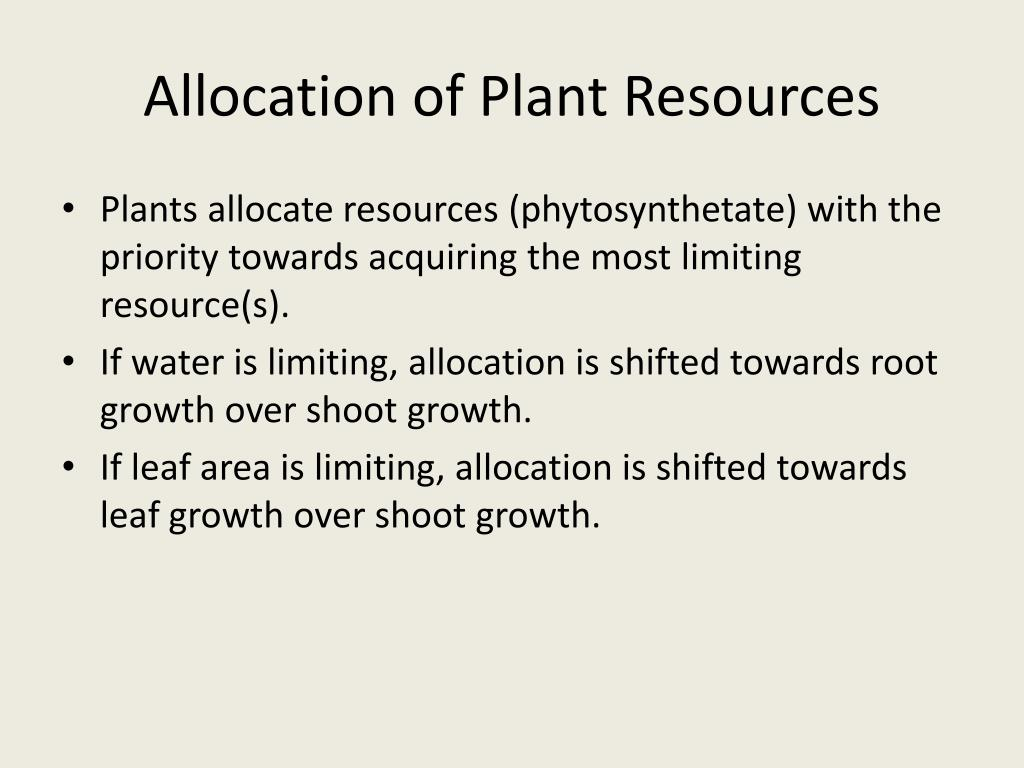 Allocation of Plant Resources
