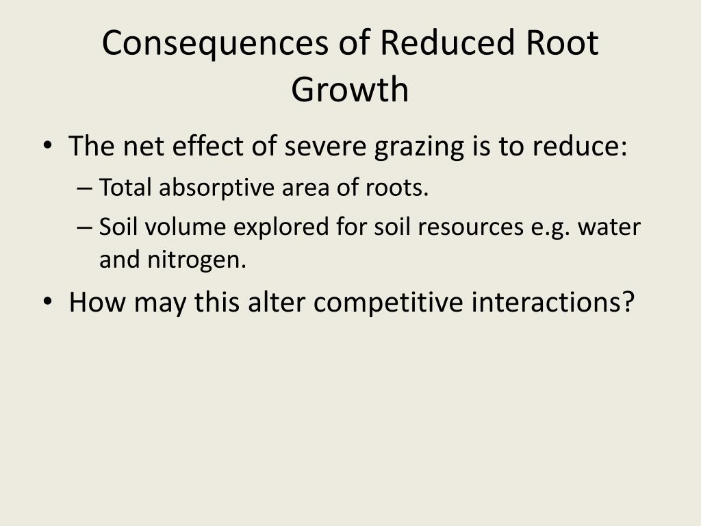 Consequences of Reduced Root Growth