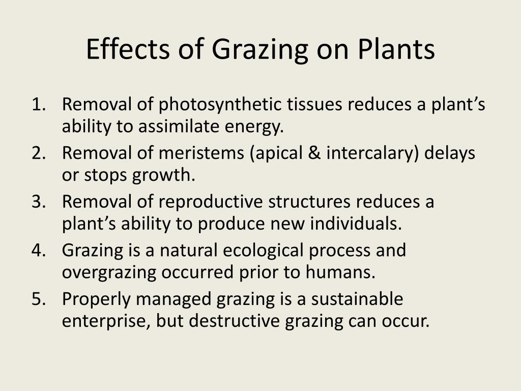 Effects of Grazing on Plants
