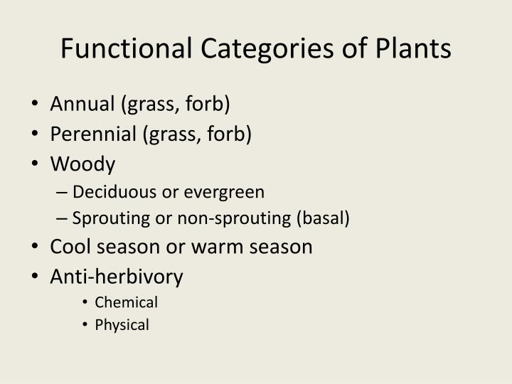 Functional categories of plants