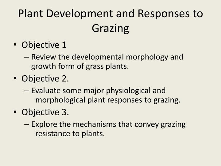 Plant development and responses to grazing