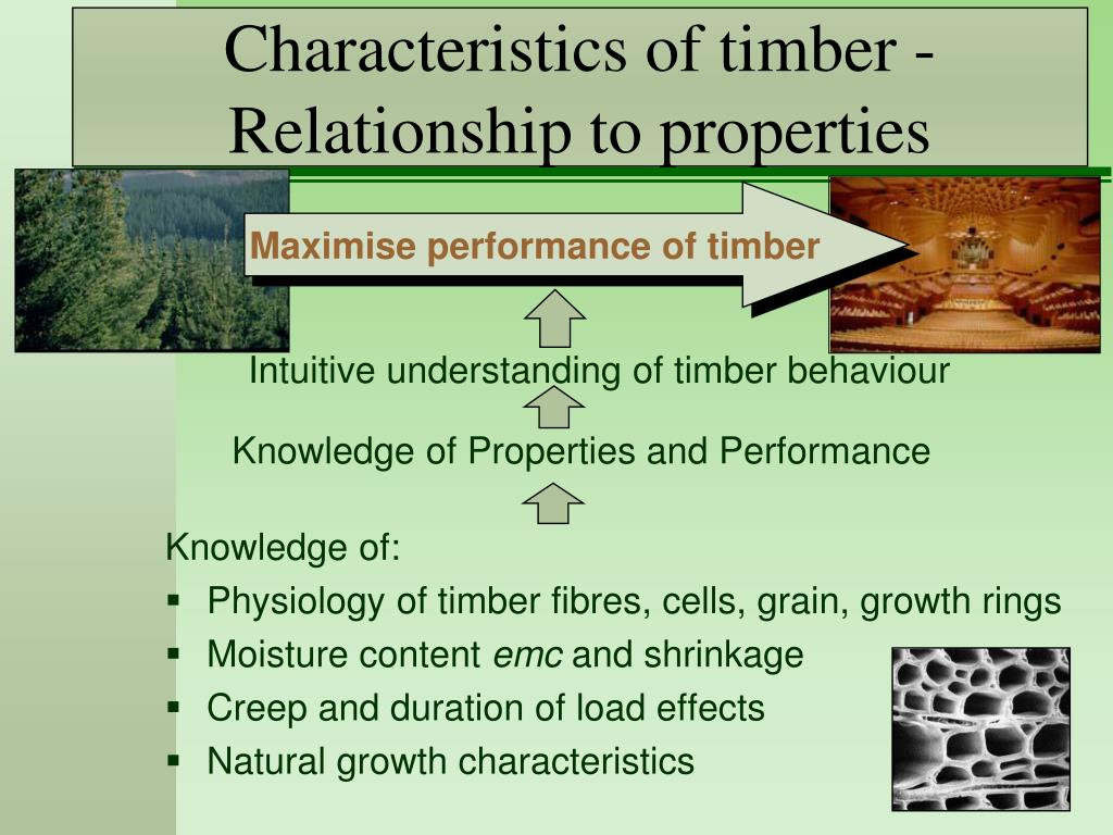 PPT - Characteristics of timber - Relationship to properties