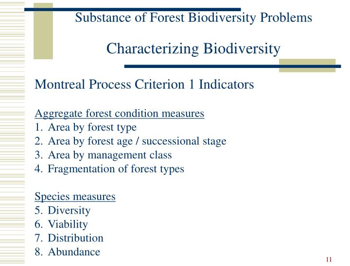 Substance of Forest Biodiversity Problems