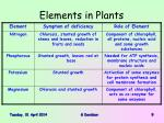 elements in plants