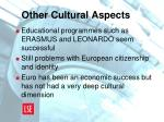 other cultural aspects
