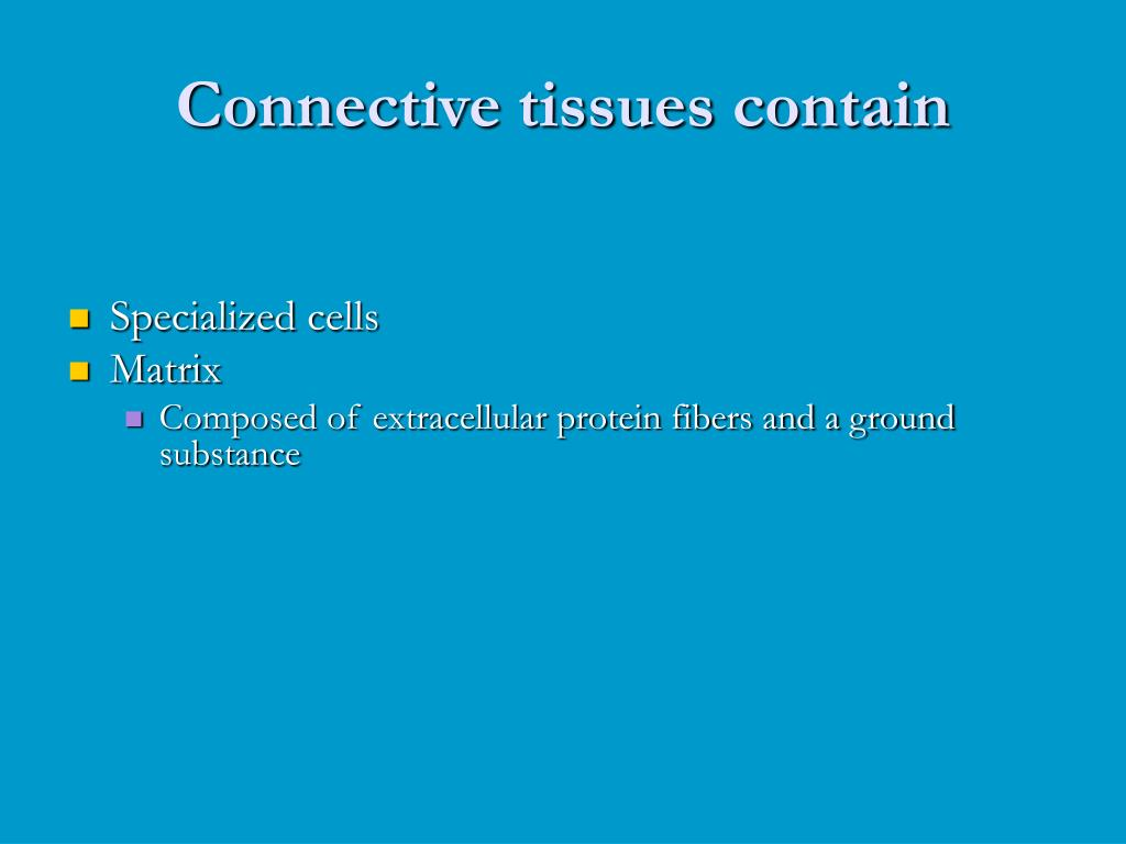 Connective tissues contain