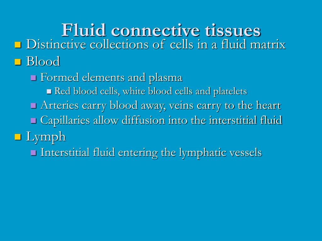 Fluid connective tissues