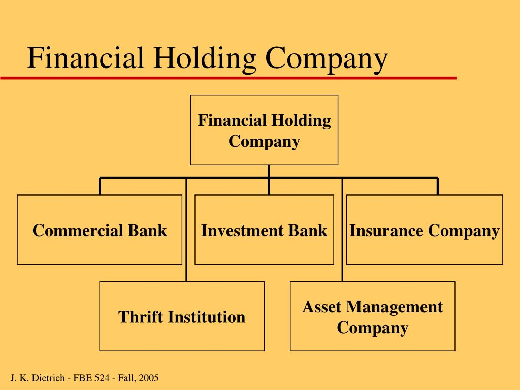 Financial Holding Company