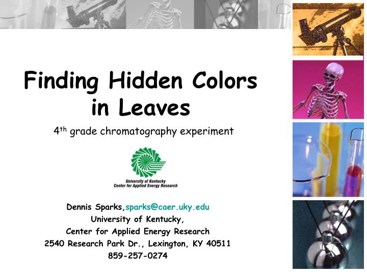 Finding Hidden Colors
