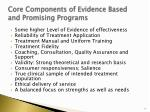 core components of evidence based and promising programs
