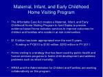 maternal infant and early childhood home visiting program