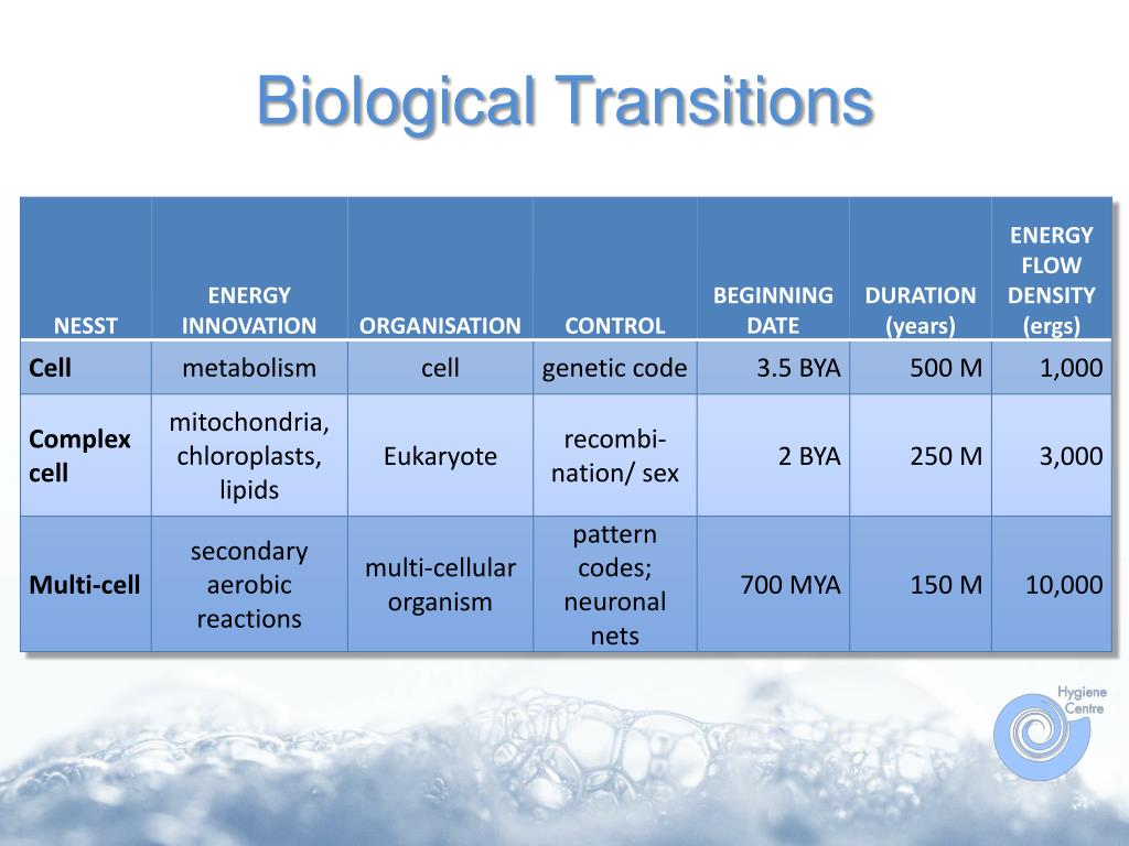 Biological Transitions