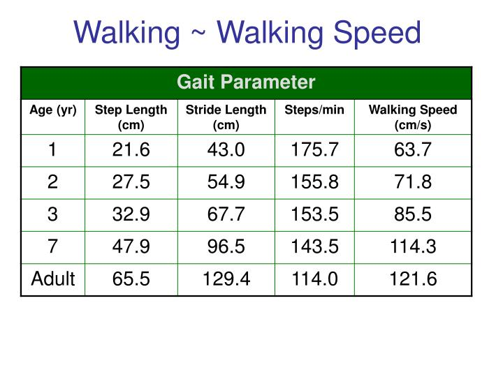 Walking ~ Walking Speed