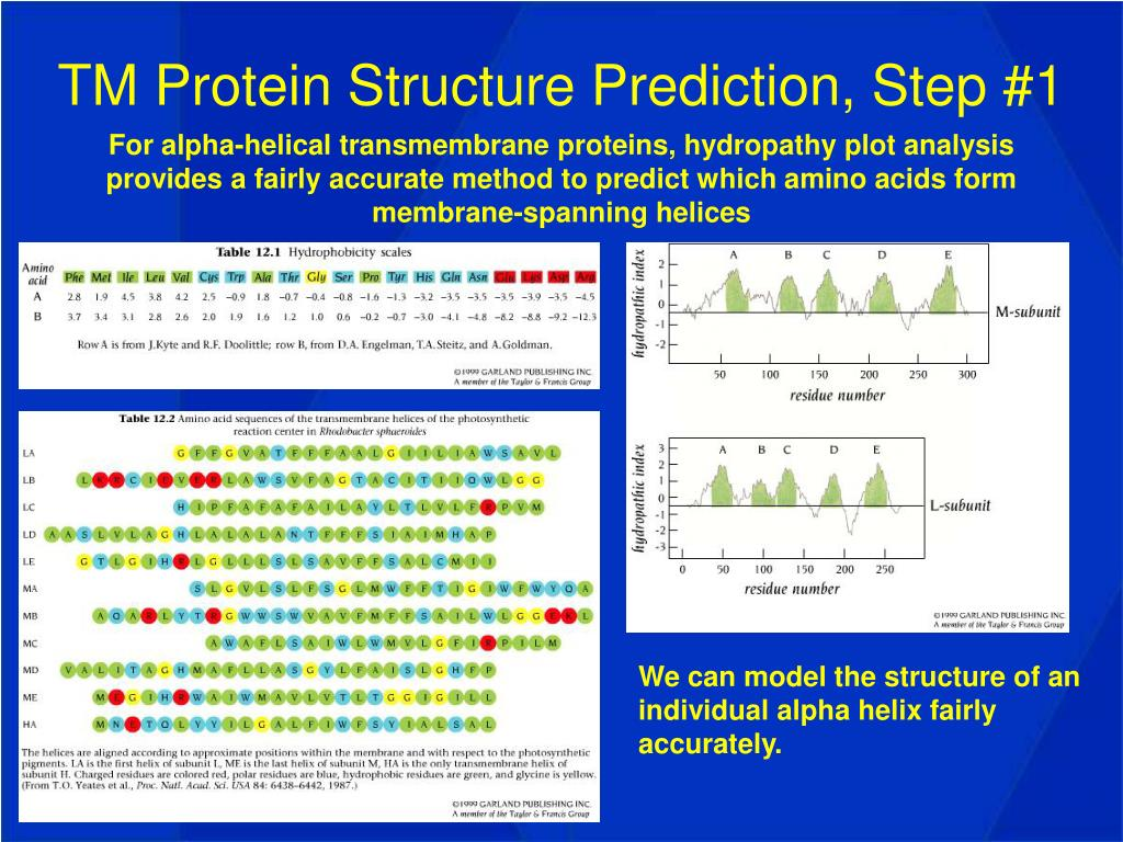 TM Protein Structure Prediction, Step #1