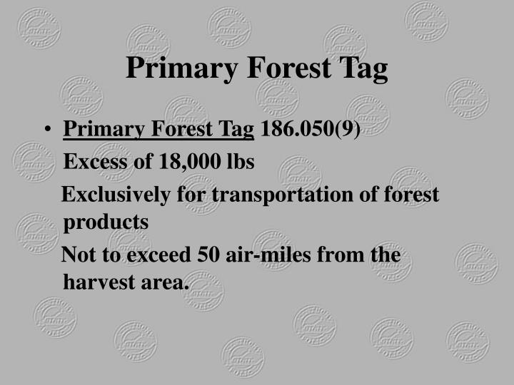 Primary Forest Tag