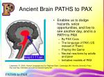 ancient brain paths to pax