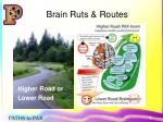 brain ruts routes