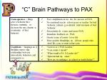 c brain pathways to pax