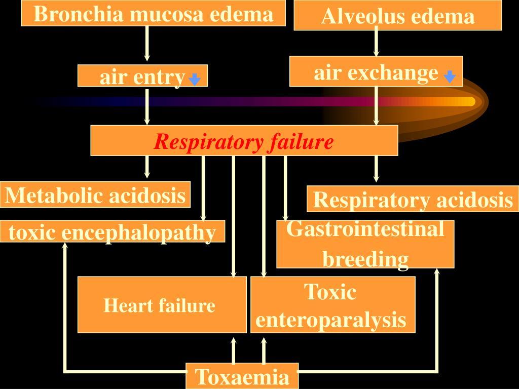 Bronchia mucosa edema
