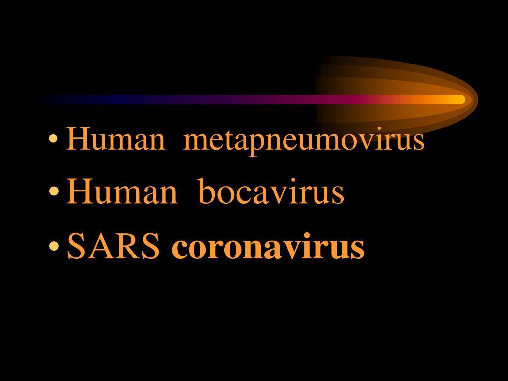 Human  metapneumovirus