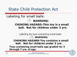 state child protection act28