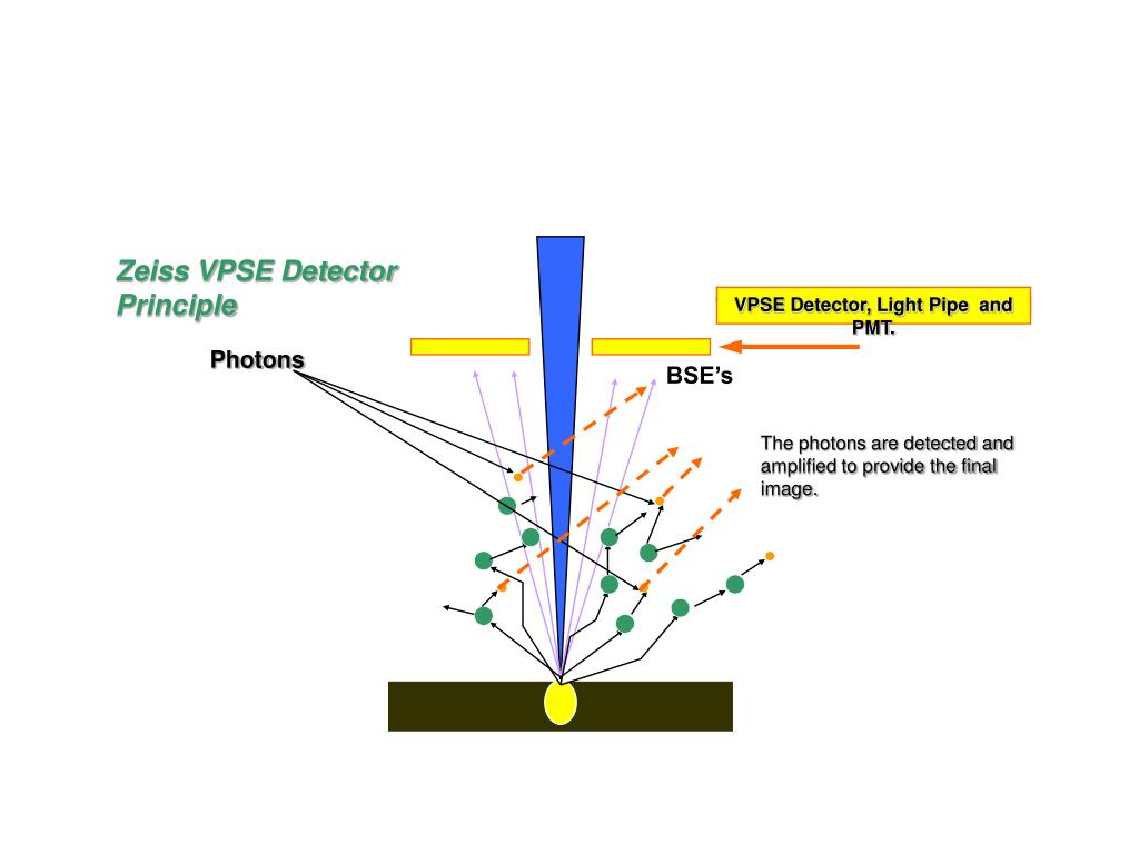 VPSE Detector, Light Pipe  and PMT.