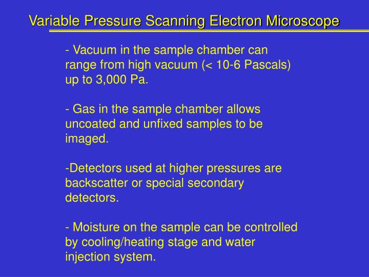 Variable Pressure Scanning Electron Microscope