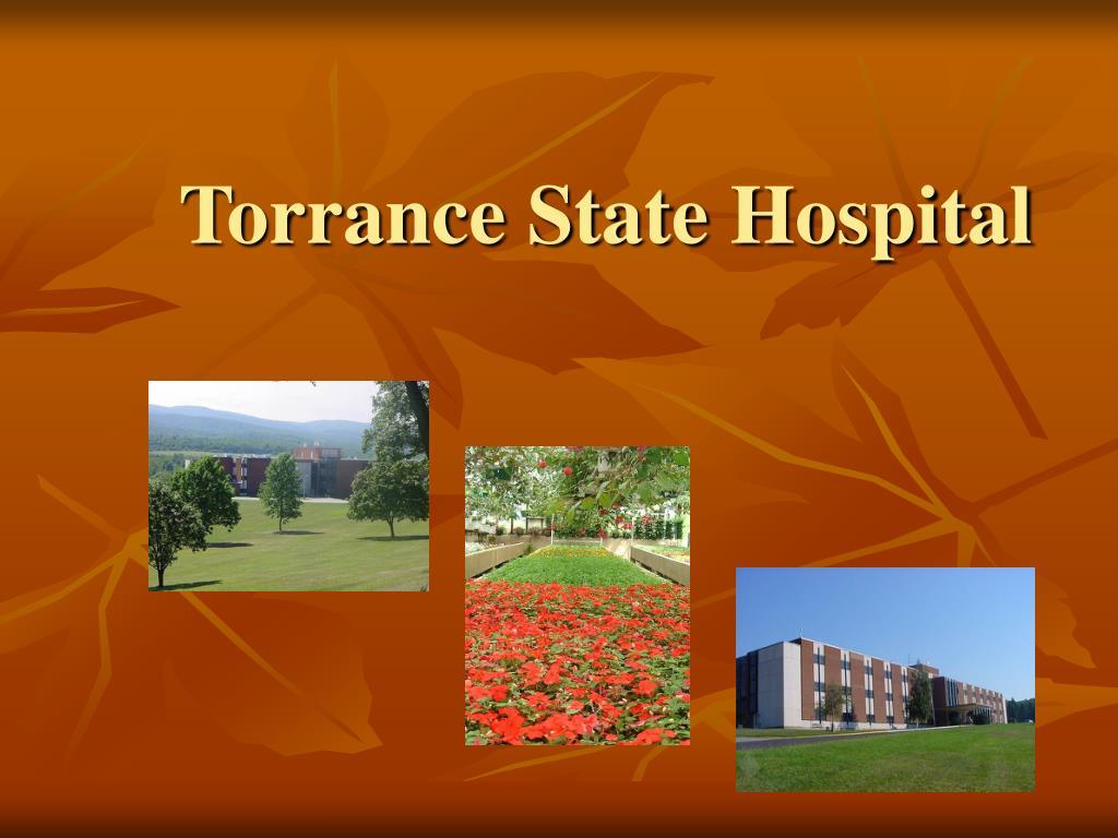 torrance state hospital l.