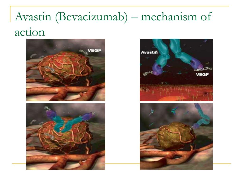 Avastin (Bevacizumab) – mechanism of action