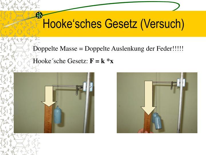 Hooke'sches Gesetz (Versuch)