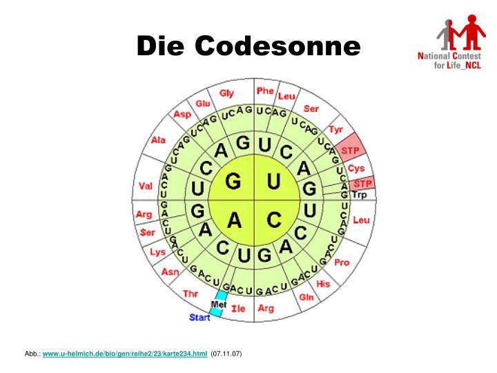 Die Codesonne