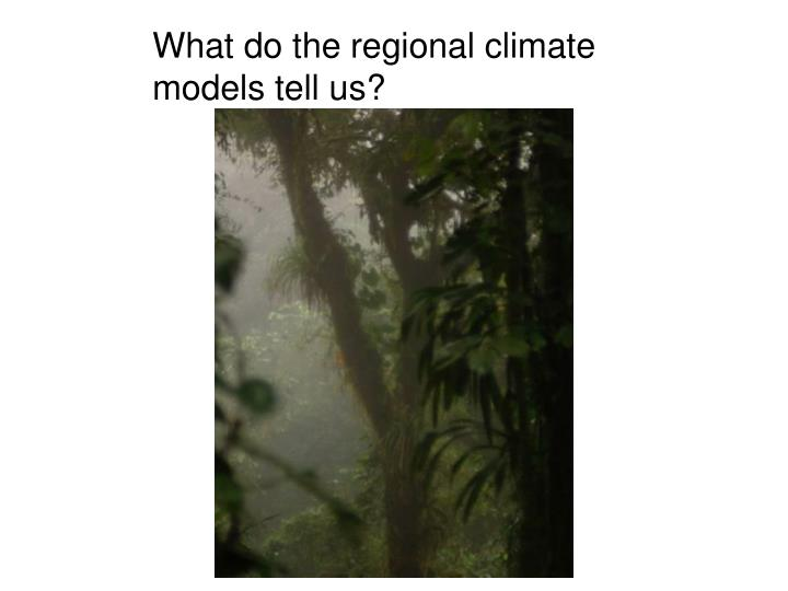 What do the regional climate models tell us?