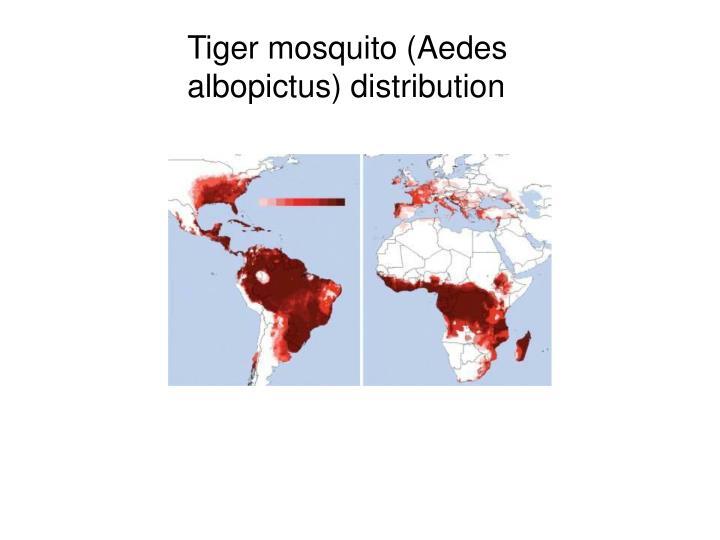 Tiger mosquito (Aedes albopictus) distribution