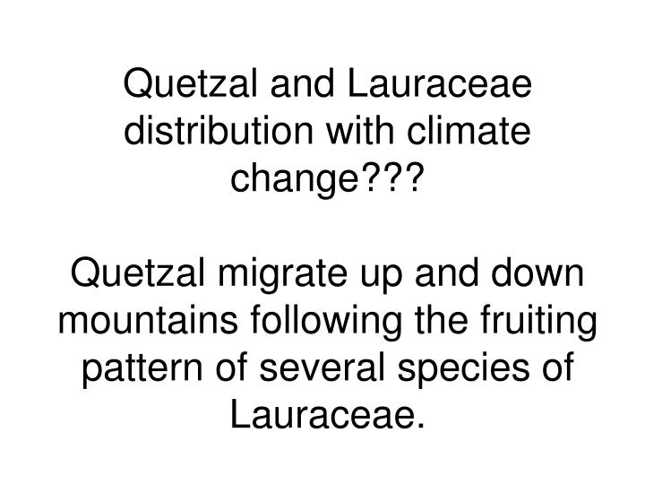 Quetzal and Lauraceae distribution with climate change???