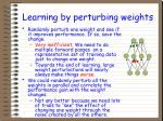 learning by perturbing weights