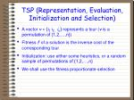 tsp representation evaluation initialization and selection