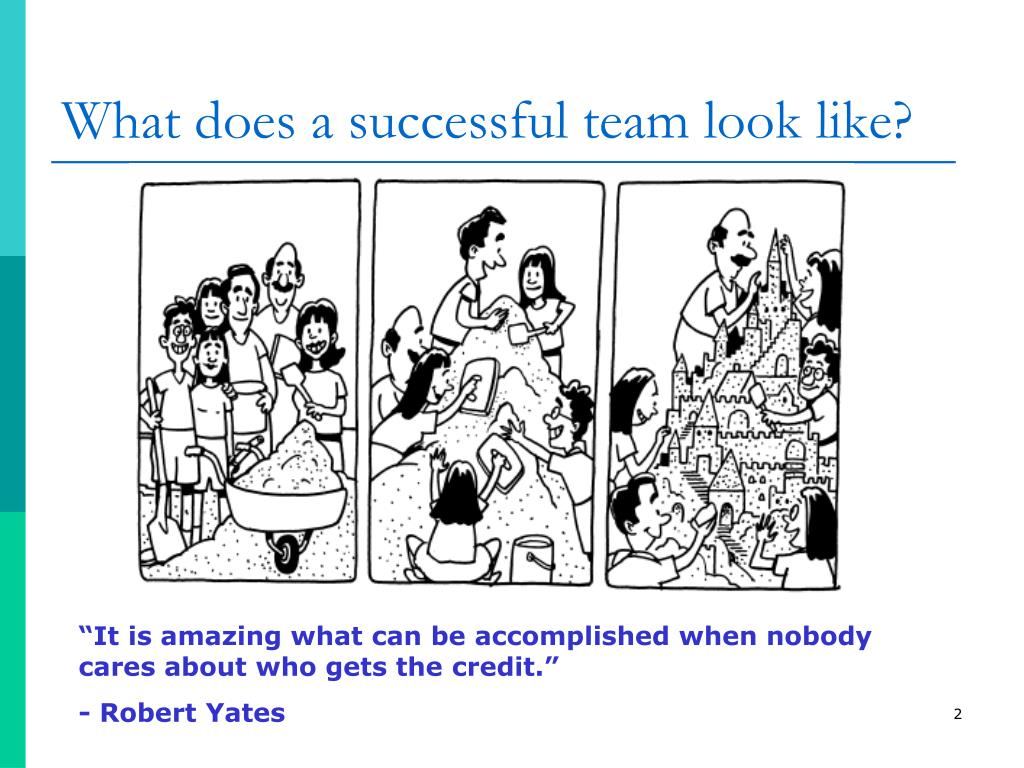 What does a successful team look like?