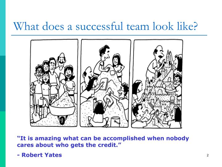 What does a successful team look like